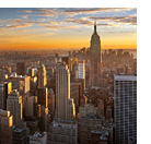 Report calls for presidency help for NYC nonprofit human companies | Philanthropy information